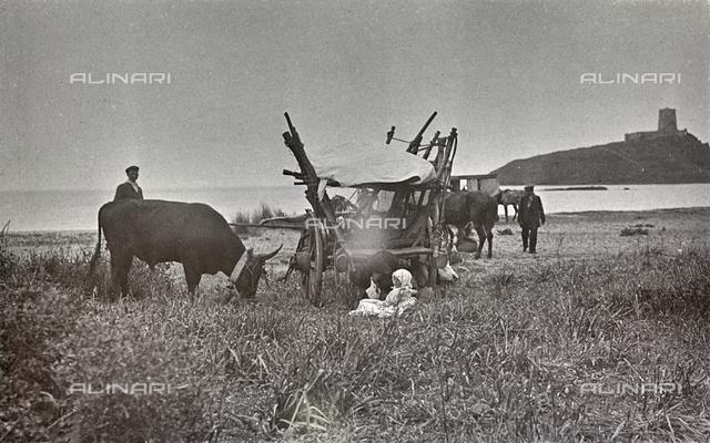 Farmers with wagon and ox, Sardinia