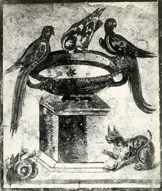 Mosaic with cup, parrot and doves, National Archaeological Museum, Naples.