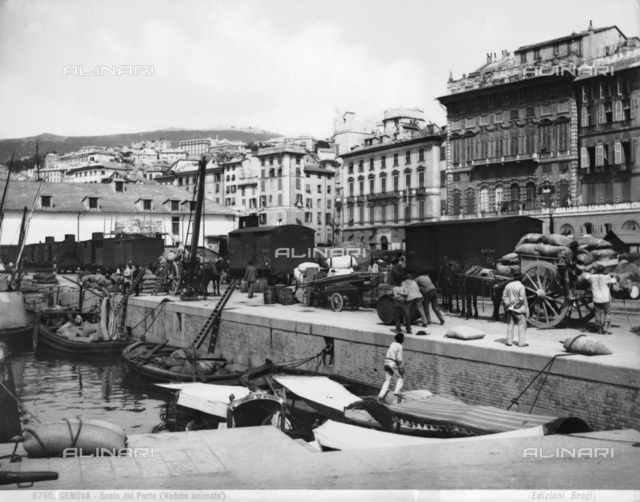 Genoa's port