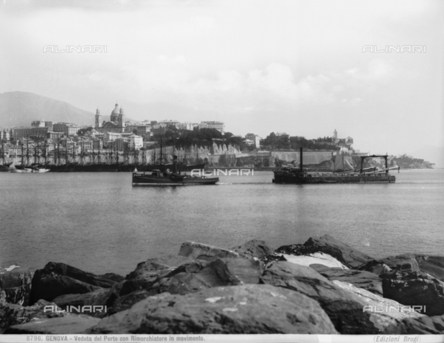 Genoa's port with tug-boat in movement