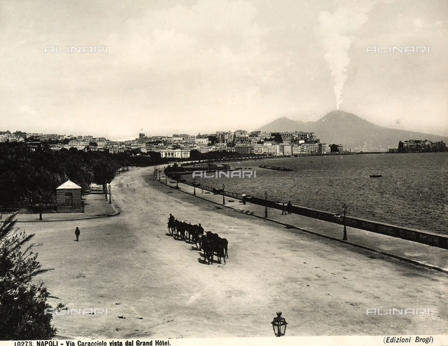 View of Via Caracciolo being crossed by a herd of animals. In the background, a view of Naples and Mount Vesuvius
