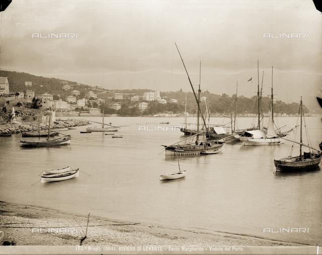 Moored boats in the port of Santa Margherita Ligure, near Genoa