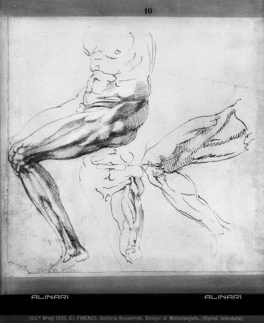 Anatomical study of legs, Casa Buonarroti, Florence