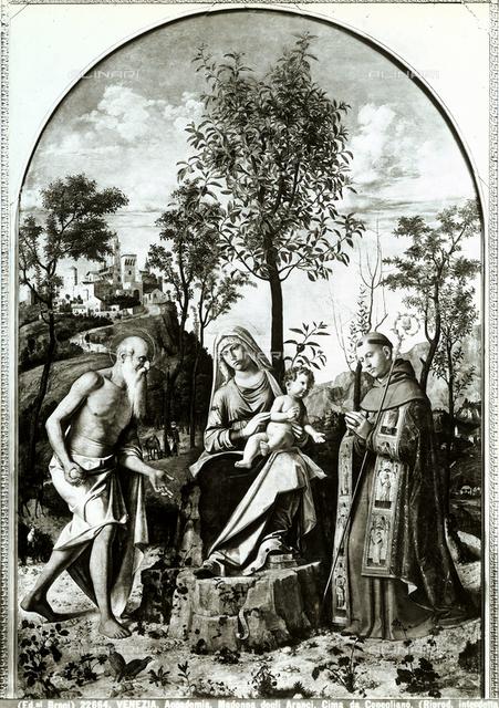 Madonna of the Orange Tree, Accademia Galleries, Venice