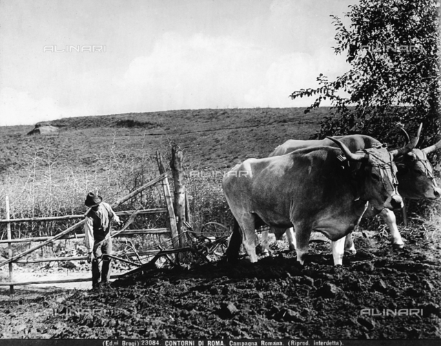 In a field in the environs of Rome a farmer is leading a plow carried by two oxen.