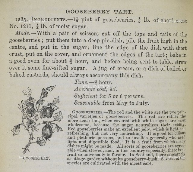 Recipe for gooseberry tart, from 'The Book of Household Management, etc. [With plates and illustrations.].' by Isabella Mary Beeton,(London : S. O. Beeton, 1861), C.194.a.507 p. 648, British Library, London