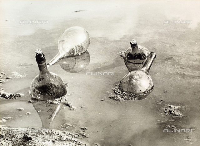 """Water flasks"". Four empty flasks floating in a pool of water, partially submerged in the mire"