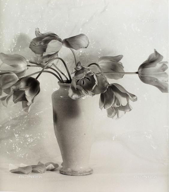 Vase with tulips.