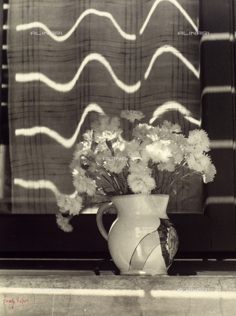 """""""The vase of carnations"""". Close-up of a vase of carnations, placed on a window sill. The sunlight reflects on the window, creating a wave effect."""
