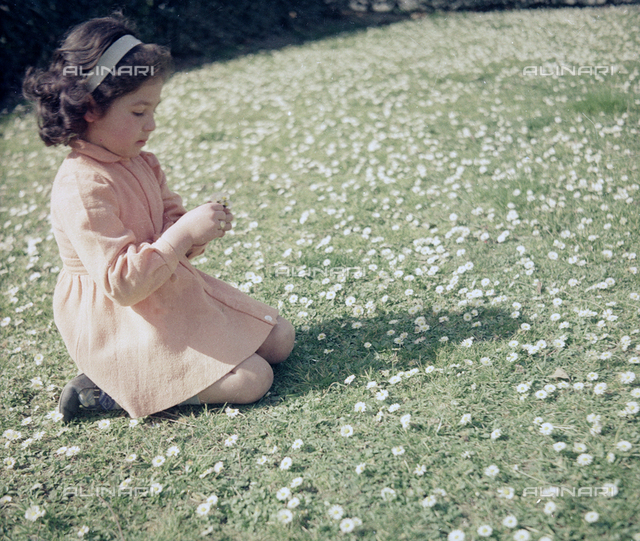 Little girl in a field of daisies, Florence