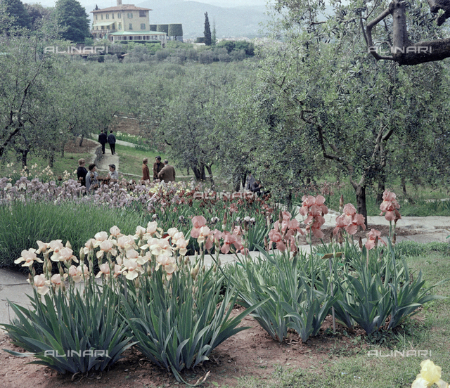 Garden, Florence