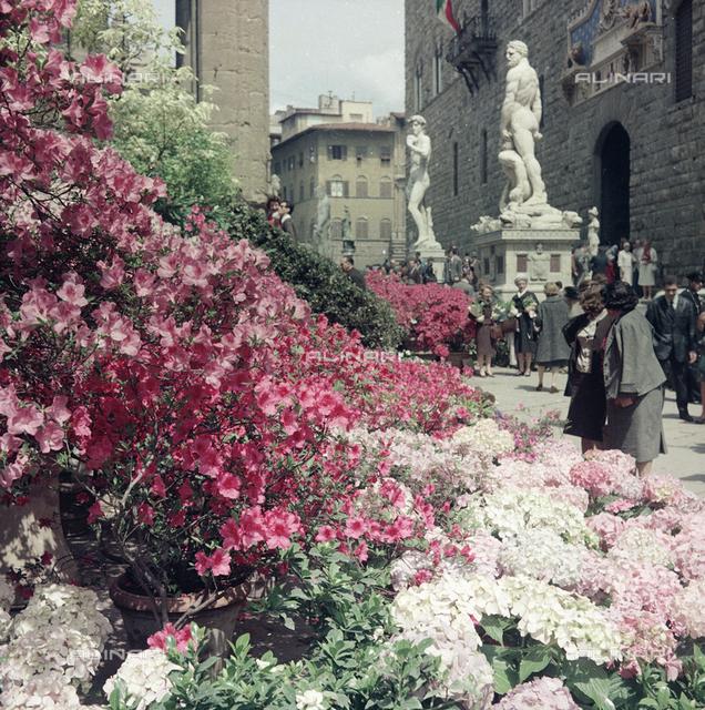 Flower Show in Piazza della Signoria, Florence