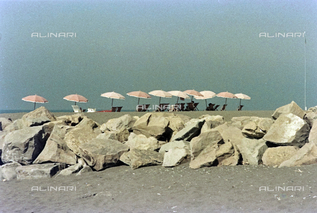The beach of Cecina