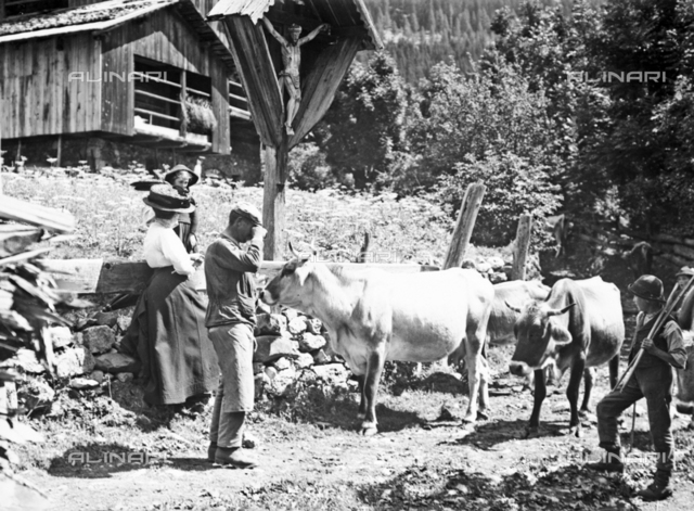 Cows passing in front of a shrine with a crucifix in Tyrol