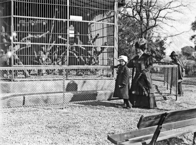 Zoo Rome: portrait of a woman with child near a cage
