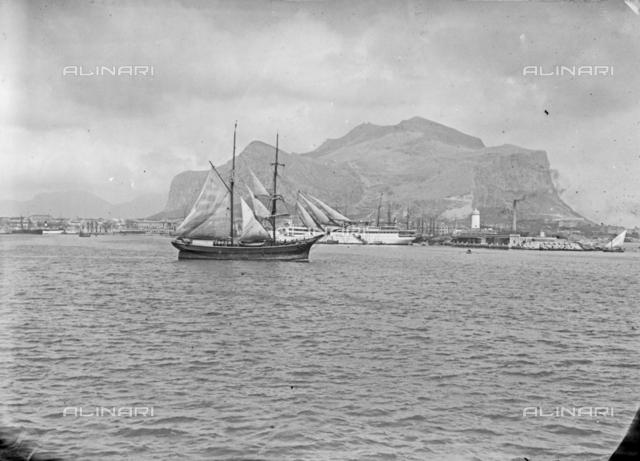 Sail Boat, Palermo
