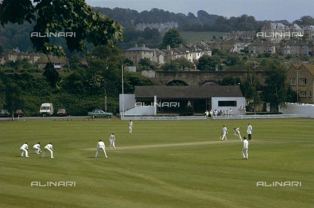 A cricket pitch