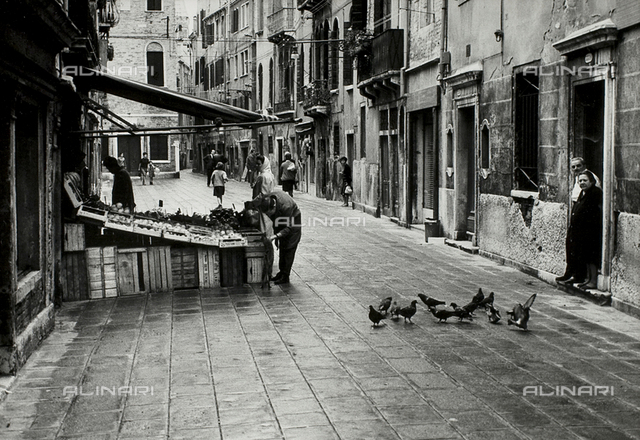 Man caressing a cat in front of a shop selling fruit and vegetables, Venice