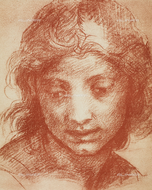 Portrait of a young man, Room of Drawings and Prints, Uffizi Gallery, Florence.