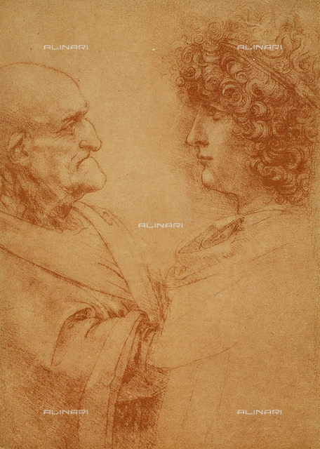 Studio for a face: head of an old and of a young man(n.423 c), Leonardo da Vinci, Cabinet of the Drawings and Prints, Uffizi Gallery, Florence