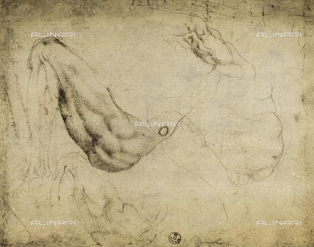 Anatomic study with a bent leg, Gabinetto dei Disegni e delle Stampe, Uffizi Gallery, Florence