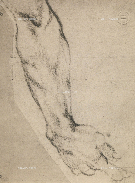 Study of an arm, Michelangelo, Casa Buonarroti, Florence