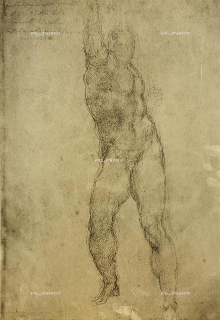 Nude study, Gallerie dell'Accademia, Venice