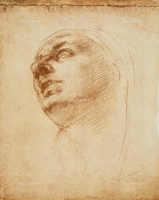 Study of a face, Casa Buonarroti, Florence