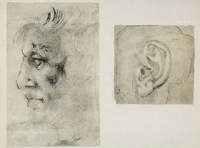 An ear and a male face in profile; drawings by Michelangelo. Casa Buonarroti, Florence