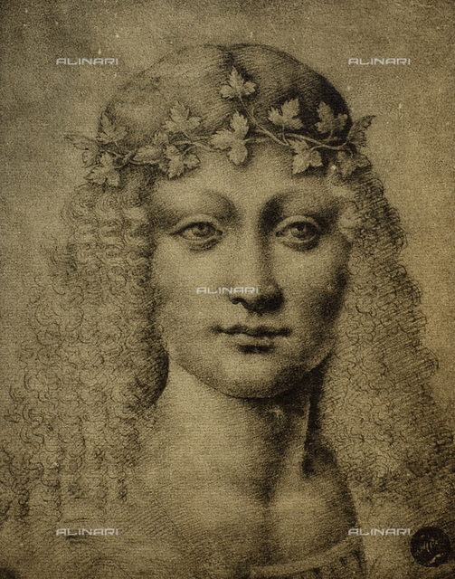 Young Bacchus, drawing by Leonardo Da Vinci, Gallerie dell'Accademia, Venice