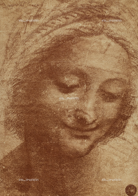 Head of St. Anne; drawing by Leonardo da Vinci, Gallerie dell'Accademia, Venice
