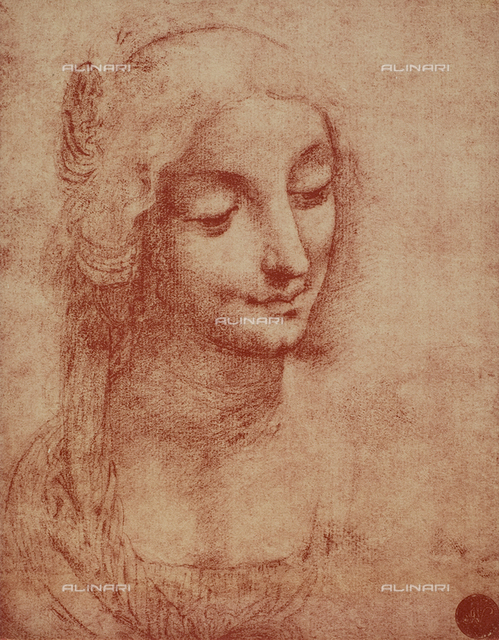 Woman's face, Gallerie dell'Accademia, Venice