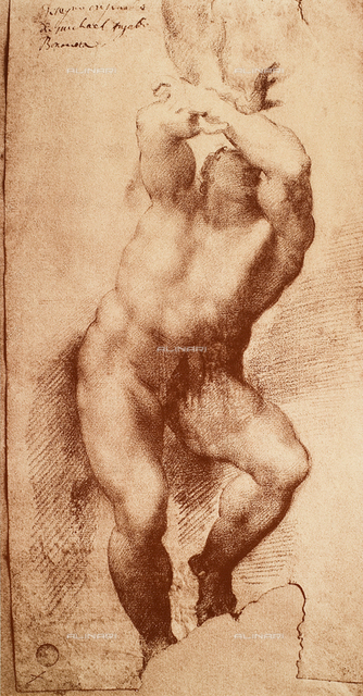 Study for one of the figures of the Last Judgement, Gallerie dell'Accademia, Venice