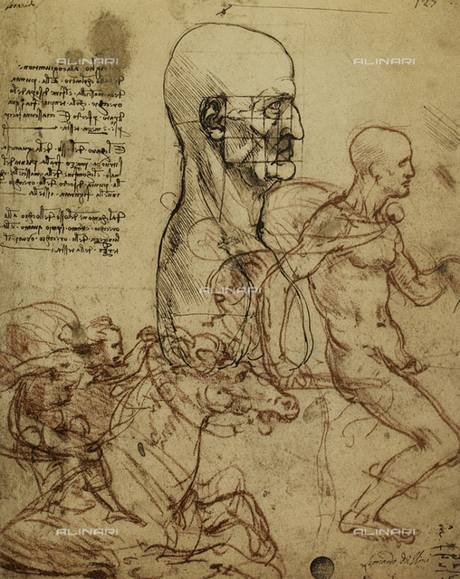 Study of the human features and a knight, drawing by Leonardo, Galleries of the Academy, Venice