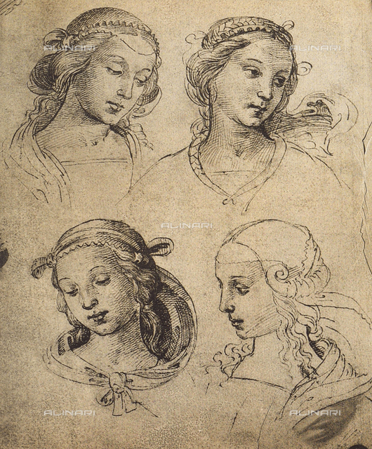 Study of four feminine faces, drawing, Gallerie dell'Accademia, Venice