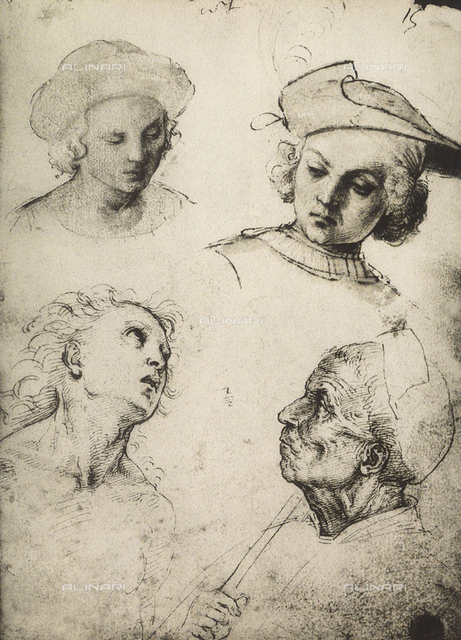 Study of four male faces, Gallerie dell'Accademia, Venice