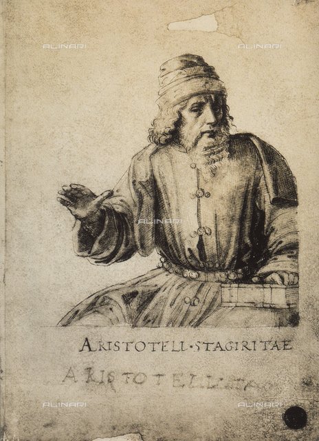 Aristotle, drawing, Gallerie dell'Accademia, Venice