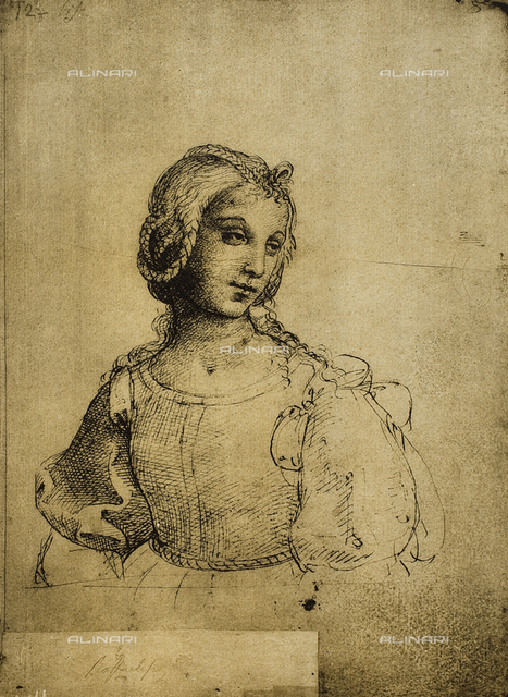 Study of a woman, Gallerie dell'Accademia, Venice