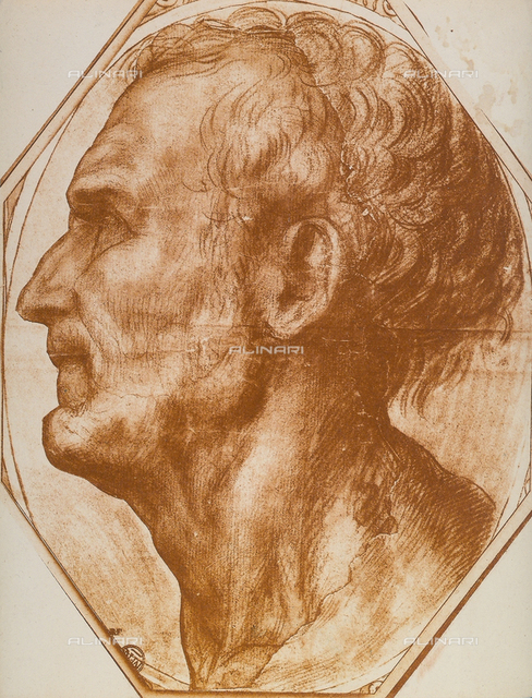Study of a man's head, Andrea del Sarto, The Louvre, Paris