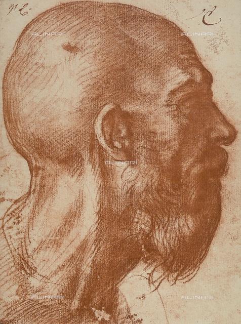 Man's head in profile, Andrea del Sarto, The Louvre, Paris