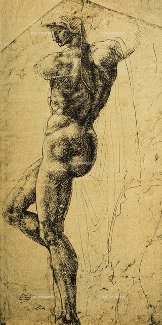 Study of a nude, drawing, Michelangelo, The Louvre, Paris
