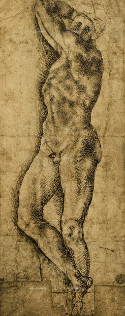 Male nude, drawing, Michelangelo, The Louvre, Paris