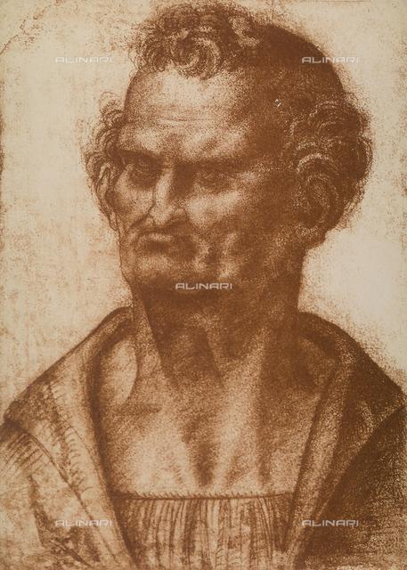 "Male caricature, drawing from the ""school"" of Leonardo, The Louvre, Paris"