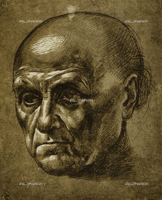 Study of the face of a man, Louvre Museum, Paris