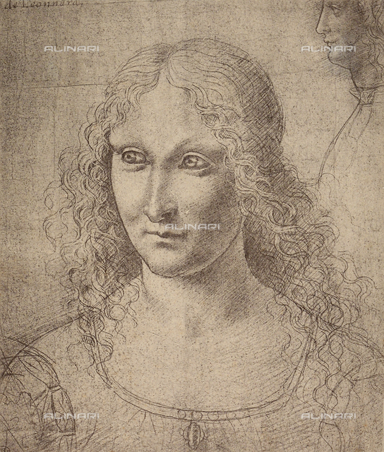 Female portrait, drawing by Leonardo da Vinci, The Louvre, Paris