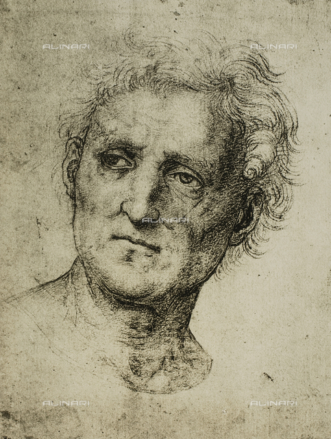 Male portrait, Raphael, British Museum, London