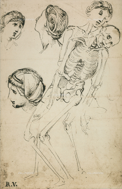 A few female heads and a skeleton, Raphael, British Museum, London