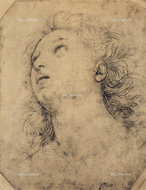 Study of a boy's face, British Museum, London