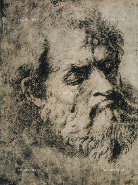 Man's head, Raphael, British Museum, London