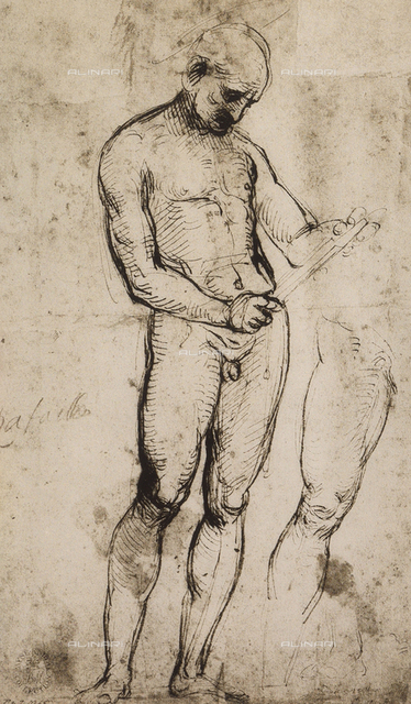 Study of a male nude, standing, Raphael, British Museum, London